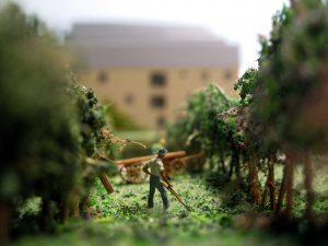plastico in scala con campi e vegetazione