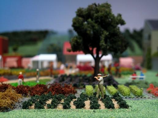 plastico modello architettura paesaggio abitato campi vegetazione