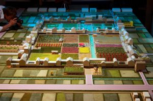 plastico architettura campi scala urbanistica biennale